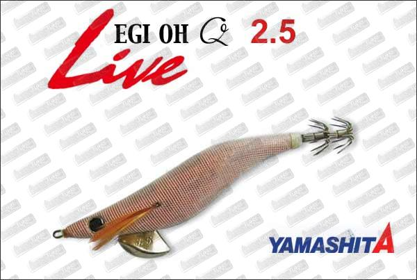 YAMASHITA EGI-Oh Q Live 2.5
