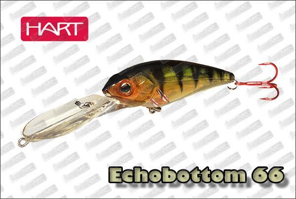 HART  Echobottom 66