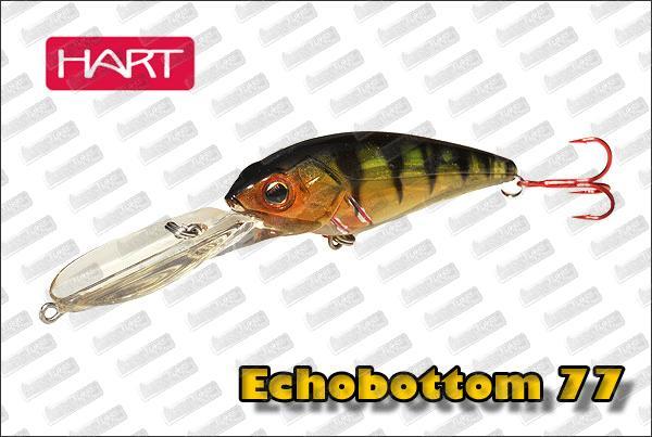 HART  Echobottom 77