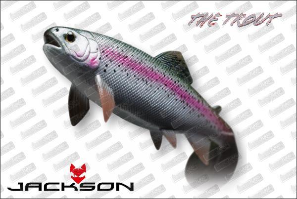 JACKSON CEBBRA The Trout