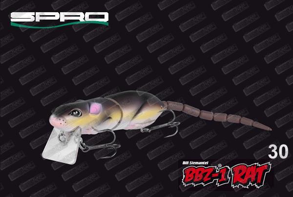 SPRO BBZ-1 Rat 30