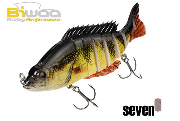 BIWAA Seven 6