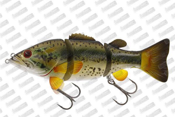 WESTIN Barry The Bass HL/SB #Largemouth Bass